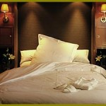 luxury_doublebed01