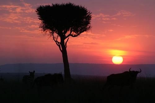 g-sunset